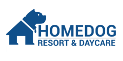 Homedog Resort located in Columbus, Ohio's Brewery District Provides Doggy Daycare Dog Boarding Dog Walking Dog Training Dog Sitting